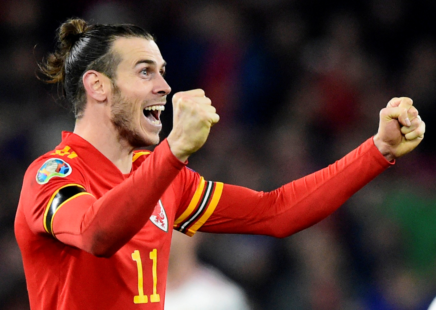 Bale's flag celebration was silly: Berbatov
