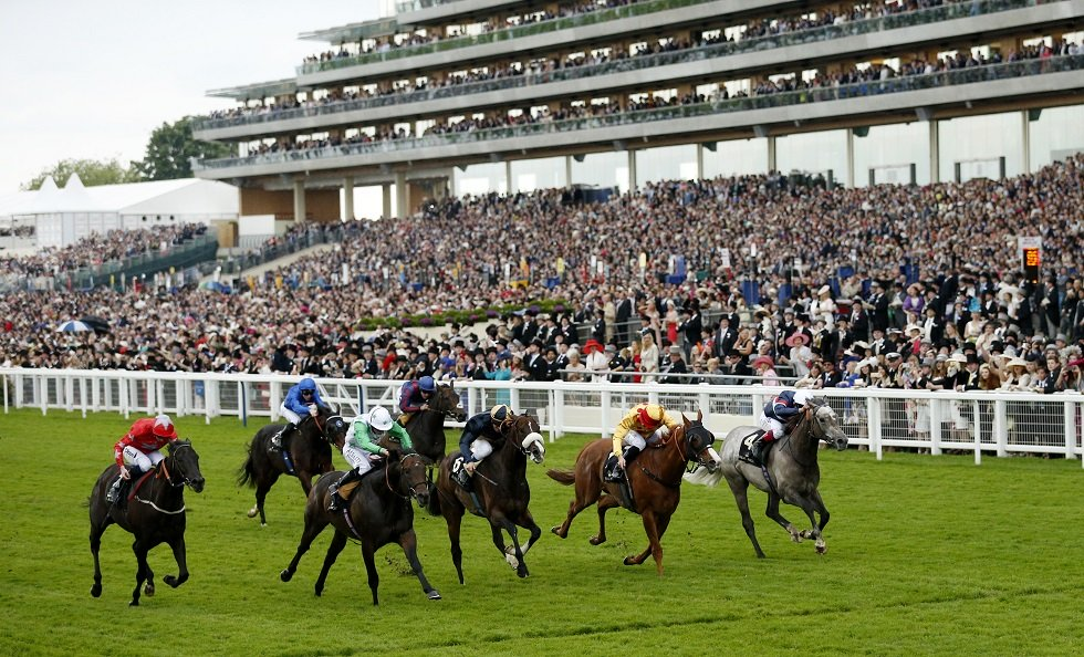Epsom Derby 2020 Date What Time & When Is The Race
