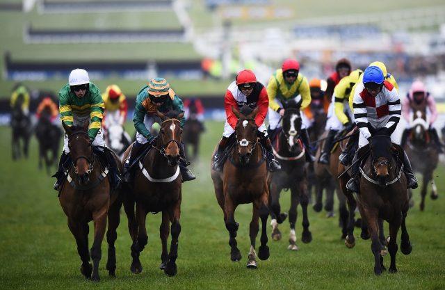 Cheltenham Festival Winner Odds 2021 Best Betting Tips & Odds!